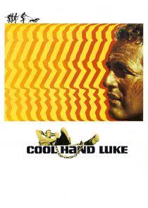 لوک خوش دست – Cool Hand Luke 1967
