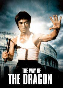 راه اژدها – The Way Of The Dragon 1972