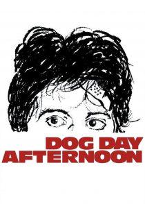 بعد از ظهر سگی – Dog Day Afternoon 1975