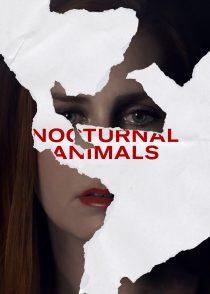 حیوانات شبگرد – Nocturnal Animals 2016