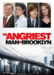 عصبانی ترین مرد در بروکلین – The Angriest Man In Brooklyn 2014