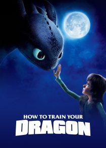 مربی اژدها – How To Train Your Dragon 2010