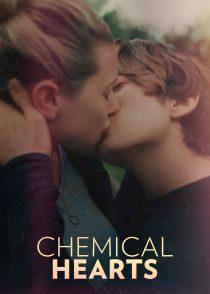 قلب شیمیایی – Chemical Hearts 2020