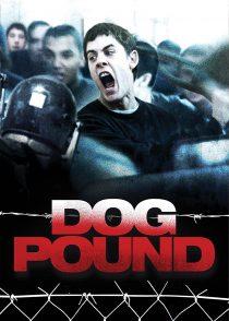 سگ پوند – Dog Pound 2010