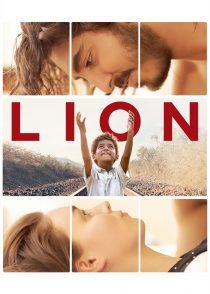 شیر – Lion 2016
