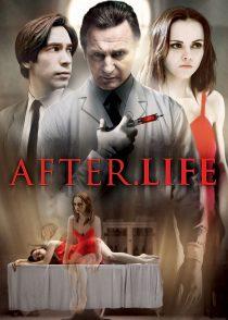 پس از زندگی – After.Life 2009