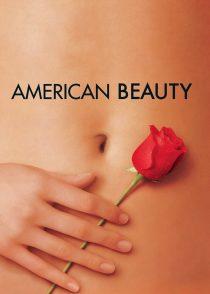 زیبایی آمریکایی – American Beauty 1999