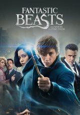 جانوران شگفت انگیز و زیستگاه آنها – Fantastic Beasts And Where To Find Them 2016