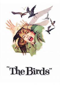 پرندگان – The Birds  1963