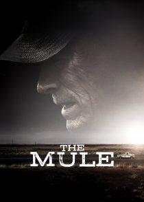 مول – The Mule  2018