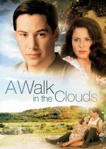راه رفتن روی ابرها – A Walk In The Clouds 1995