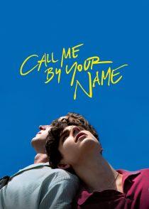 مرا با نامت صدا کن – Call Me By Your Name 2017