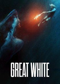 سفید بزرگ – Great White 2021