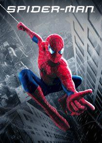 مرد عنکبوتی – Spider-Man 2002