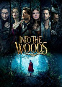 به سوی جنگل – Into The Woods 2014
